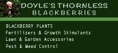 Doyle's Thornless Blackberry, Inc.
