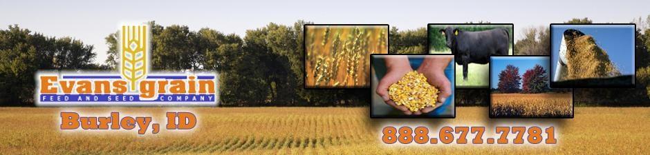 Evans Grain Feed & Seed Co.