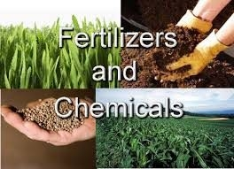 Fertilizers and Chemicals