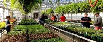Greenhouse and Horticulture